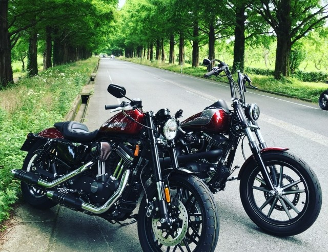 バイク売るならドコ?おすすめ比較ランキング 2019年最新版